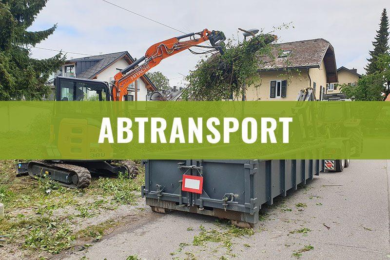 abtransport-gruen-gehoelzschnitt-2